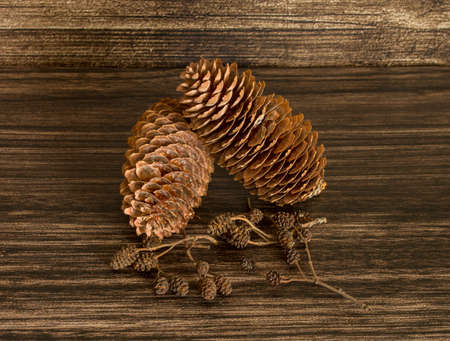 Dry Pine cones and alder cones on the wooden background
