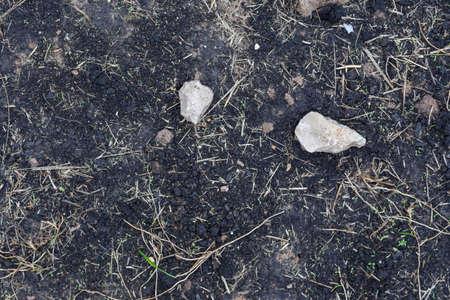 texture of the soil Reklamní fotografie - 88574145