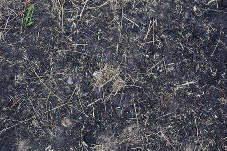 texture of the soil Reklamní fotografie - 88574148