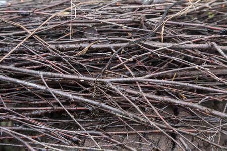 Close-up image of part of besom, textured background