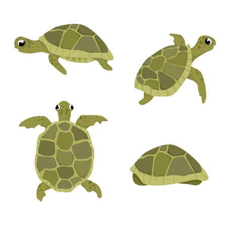 Ilustración de vector de tortuga de mar conjunto aislado sobre tortugas de fondo blanco en diferentes posiciones vistas Foto de archivo - 84946873