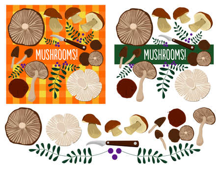 country kitchen: Different mushrooms set. Mushrooms on a table autumn composition. Illustration