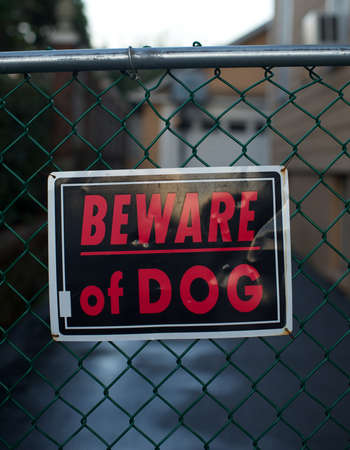 beware of dog  photo