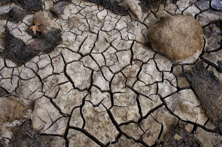 riverbed: drought cracked riverbed