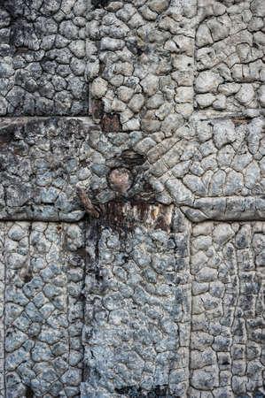 burnt wooden door background
