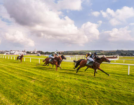 Race horses on the home straight Editorial