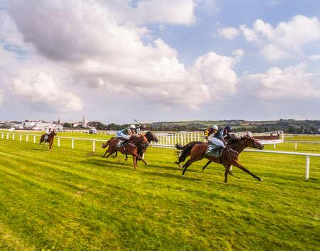 Race horses on the home straight Redakční