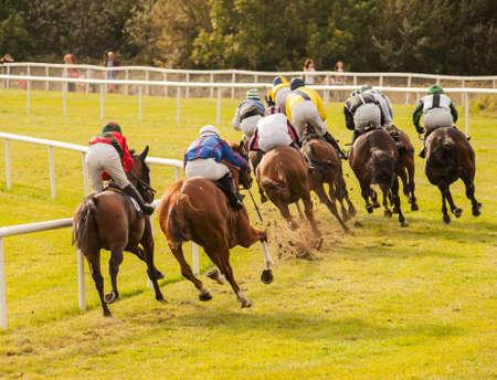 horse racing: caballos de carreras por la pista