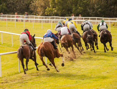 corse di cavalli: cavalli da corsa lungo la pista