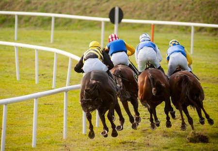 caballo corriendo: caballos de carreras de la pista