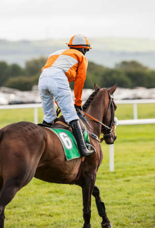 jockey on race horse going down the track