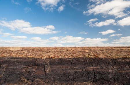 turba: Turba irlandesa pantano paisaje Foto de archivo