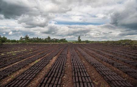landscape of peat bog bricks drying in a field