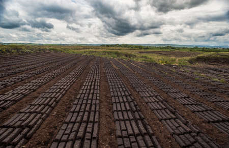 irish culture: dark cloudy peat bog field landscape Stock Photo