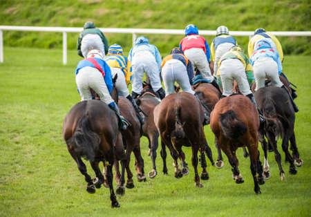 racehorses: racehorses and jockeys racing down the track Stockfoto