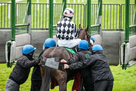 Pushing Race Horse into Starting Gate