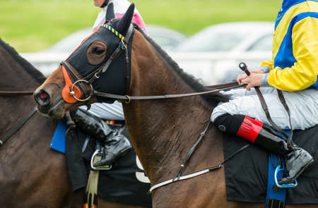 horse competition: close up of jockeys on race horses Stock Photo