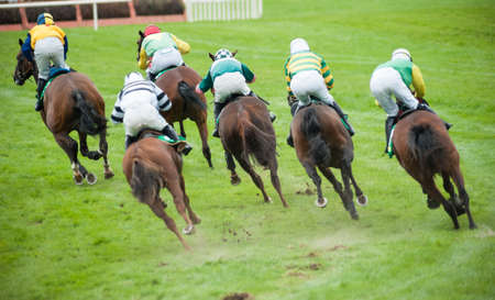 race horses taking a sharp turn on the race track Archivio Fotografico