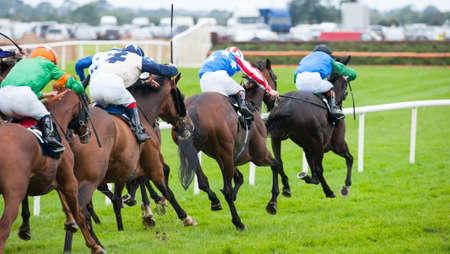Race horses running towards the finish line Zdjęcie Seryjne - 52582217