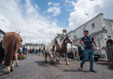 irish culture: Listowel, Ireland - 2nd July 2015: Man walking horses through the street during the Listowel horse fair.The horse fair is a popular market for the buying and selling of horses going back generations. Editorial