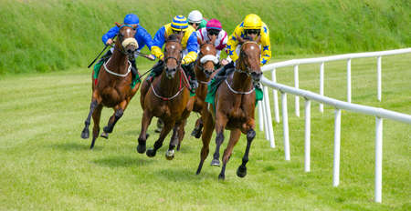 Race paarden en jockeys gaan naar de eindstreep