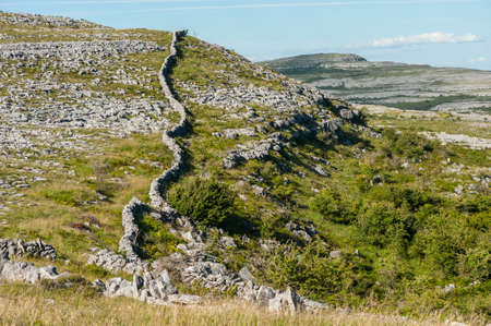 burren: Old historic Stone Walls through the rocky wilderness landscape of The Burren in County Clare, Ireland
