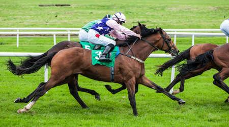 Jockeys en race paard inhalen met de lood paarden in een race Stockfoto