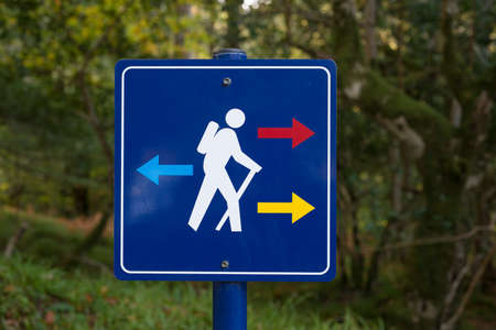 guidepost: Hiking trails direction sign in the forest