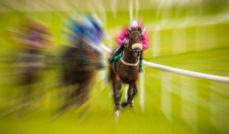 Race horses and jockeys racing motion blur