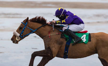 Close up action of galloping Race horse and jockey racing on the beach