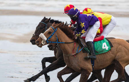 Close up action of galloping Race horses and jockeys racing on the beach