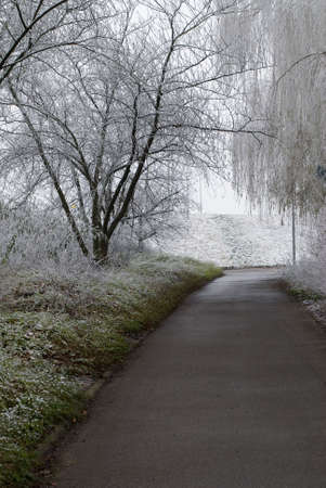 wintertime in the city with road Stock Photo - 2276530