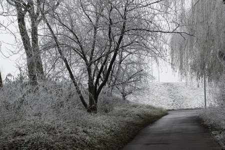 wintertime in the city with road Stock Photo - 2276531