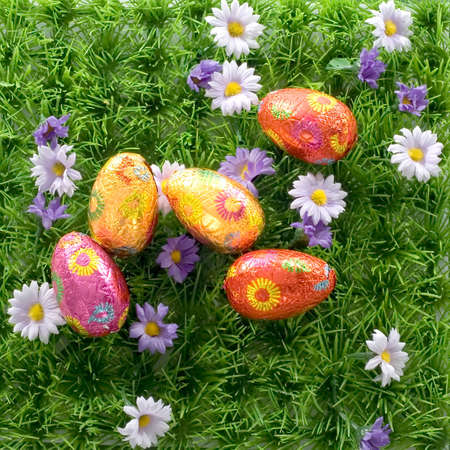 chocolat eggs hide in the grass Stock Photo - 4505085