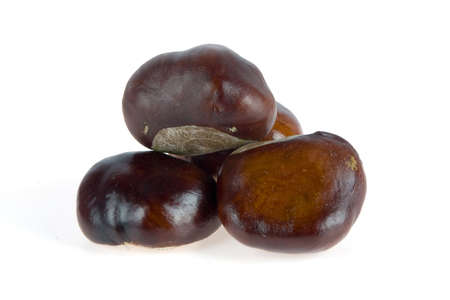 four chestnuts together on white Stock Photo - 5768031