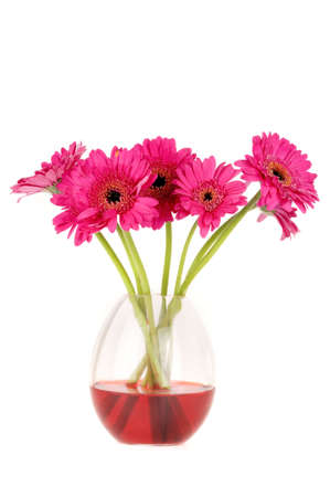 a lot of daisies in a  vase, made of glass photo