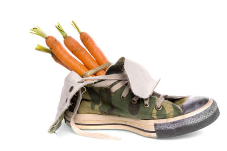 a shoe with carrots, a dutch tradition