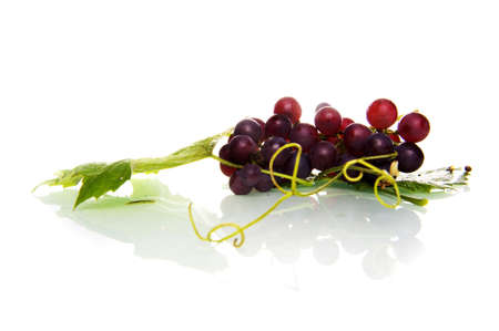 grapes and  a leaf Stock Photo - 7958476