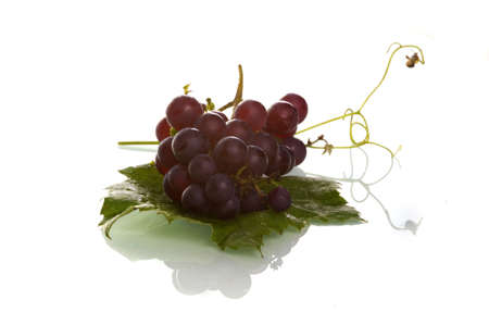 grape snail: grapes with a leave and two little snails Stock Photo