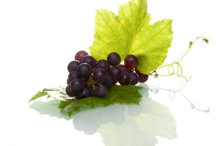 grapes with a leaf Stock Photo - 7958786