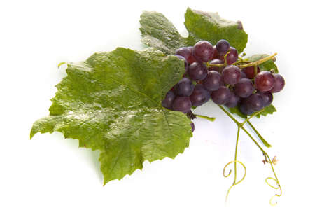 grapes with a leaf photo