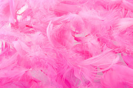 a background made of pink feathers