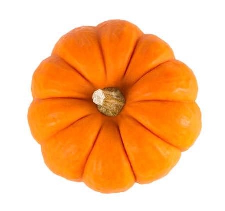 Mini orange pumpkin isolated on a white background