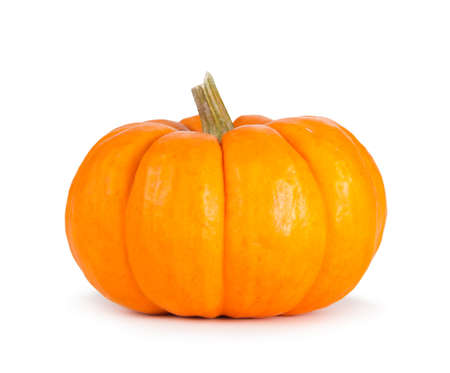 Mini orange pumpkin isolated on a white background