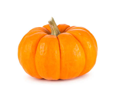 흰색 배경에 고립 된 미니 오렌지 호박입니다.