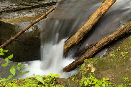 Tranquil stream cascading over stones and branches at Hocking Hills State Park, Ohio.