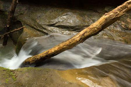 静かな川の石の上にカスケード ホッキング ヒルズ州立公園、オハイオ州で枝分かれしています。
