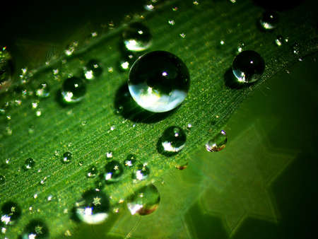 Waterdrops Stock Photo - 7014554