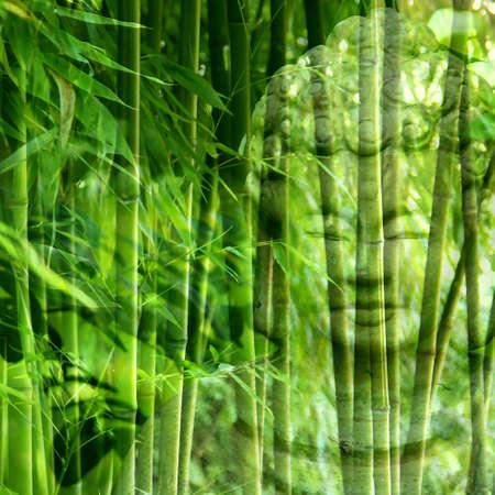 buddhist meditation: Buddha with Bamboo Stock Photo