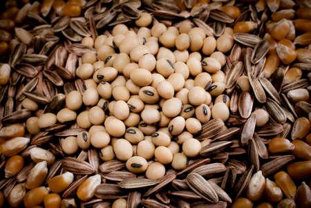 compendium: compendium seeds